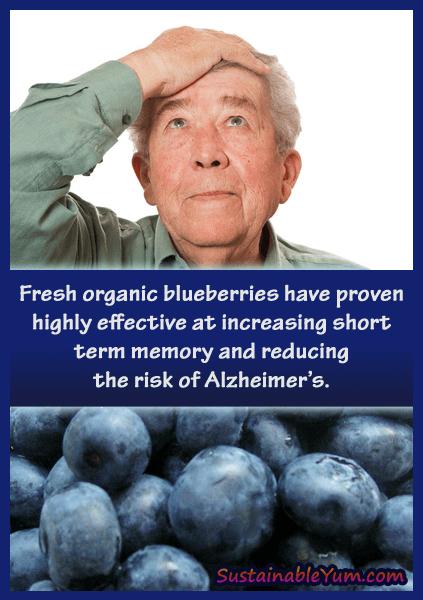 Blueberries protect against Alzheimer's
